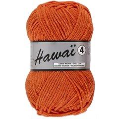 Lammy Hawai 4