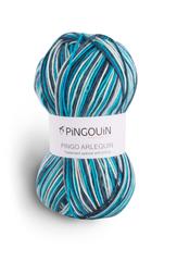 Pingouin Pingo Arlequin