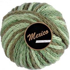 Lammy Mexico