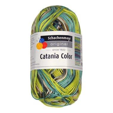 Schachenmayr Catania Color 203 Groen/Bruin Patroon color